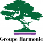 cropped-logo_groupeharmonie_gh_color-e1423688502796.png